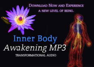 inner-body-2