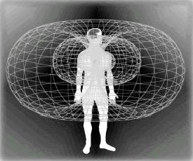 toroidal-heart-electromagnetic-field