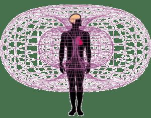 toroidal-heart-field