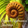 Spiritual Travelers – Ayahuasca Medicine Retreats