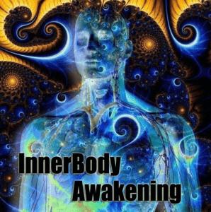 innerbody4-1