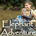 Spiritual Travelers - Elephant Adventure