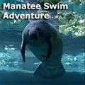 Spiritual Travelers - Manatee Swim Adventure