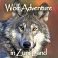 Spiritual Travelers - Wolf Encounter Adventure